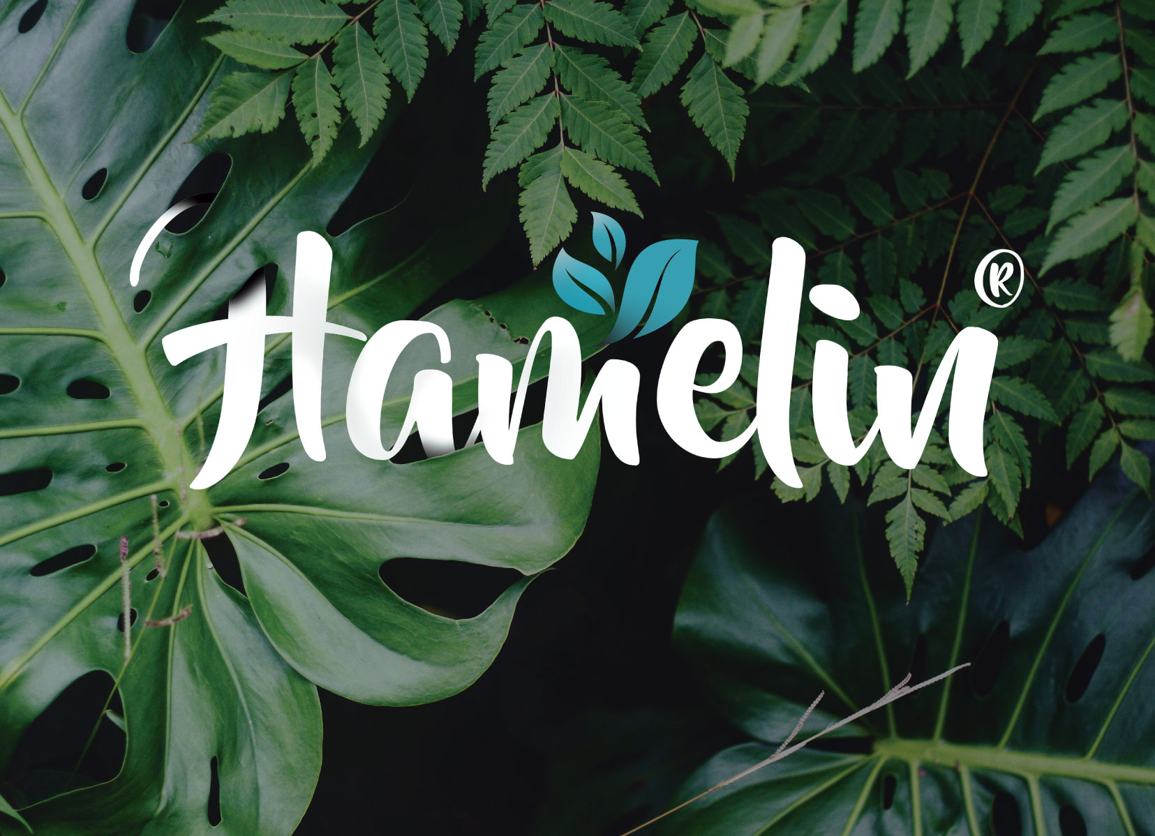 Usuario en Hamelin: nicolasgarzontrujillo - Usuario